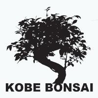 Kobe Bonsai