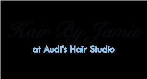 Hair By Jamie at Audi's Hair Studio logo
