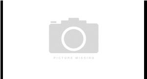 Parthenon Grille logo
