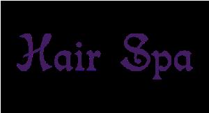 Hair Spa logo