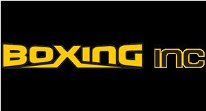 Boxing Inc logo