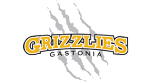 Grizzlies Baseball Team logo