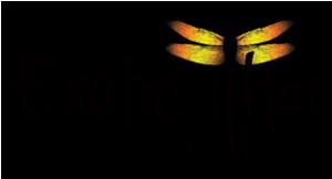 Exotic Thai Bistro logo
