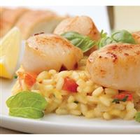 $20 For $40 Worth Of Fine Italian Dinner Dining