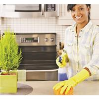 $99 For Two 3-Hour House Cleaning Sessions (Reg. $280)