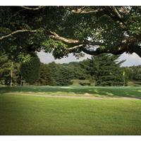 Image of $30 for a Round of Golf for 2 Players Including Green Fees and Cart (Reg $60)