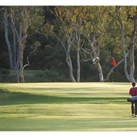 Image of $30 For 18 Holes Of Golf, Greens Fees & Cart For 2 (Reg. $60)