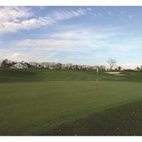 Image of $120 For A Golf Package For 4, Greens Fees & Golf Cart (Reg. $240)