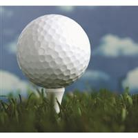 Image of $38 For 18 Holes Of Golf For 2 Including Cart (Reg. $76)